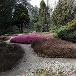 Foto de Arboretum Trompenburg
