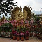 صورة فوتوغرافية لـ Ten Thousand Buddhas Monastery (Man Fat Sze)