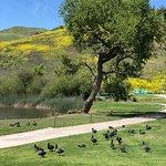 Foto de Spring Valley Golf Course