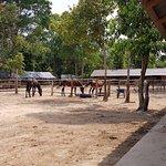 Photo of Liberty Ranch