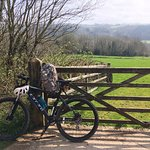 Photo of Plym Valley Cycle Trail