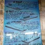 Types de pêches à La Cotinière