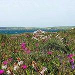 Tripudio di colori in primavera 😍😍😍