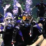Diving Divequest