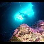 Foto de Gran Canaria Divers