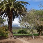 \the Wine Estate is surrounded by beautiful countryside.