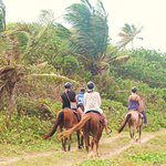 Arriving at the beach ion St. Lucia on our beautiful horses