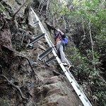 Bild från Mount Santubong