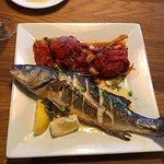 Small Bronzino fish