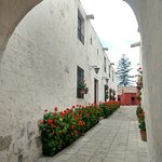 Photo of Monasterio de Santa Catalina