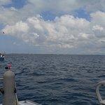 Photo de Stuart Cove's Dive Bahamas