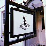 Black Cat Picture