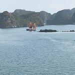 Photo of Bai Tu Long Bay