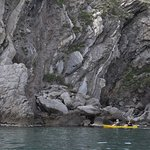 Exploring Natural Parc the Cap de Creus with kayak.
