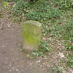 'Windsor's grave'