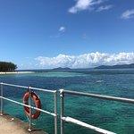Photo of Green Island