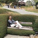 Amazing Botanic Garden