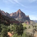 Zion is great for driving or taking the shuttle, but the hiking is even better! I recommend rent