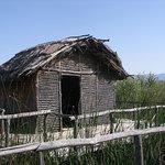 Προϊστορικός οικισμός