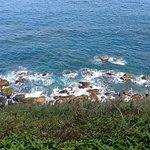 ภาพถ่ายของ Bitoujiao Trail