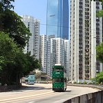 Tramway could provide you a great travel experience at a very low cost.