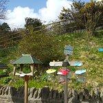 Bird Cafe, RSPB Arne