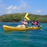 Kayaking in the Mangrove Lagoon (Photo taken by guide)