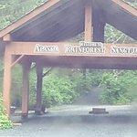 Alaska Rainforest Sactuary entrance