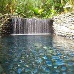 Billede af Eco Termales Hot Springs