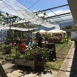 The restaurant garden