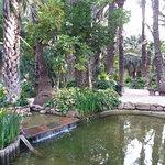 Photo of Huerto Del Cura Jardin Artistico Nacional