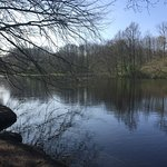 Photo of Amsterdamse Bos