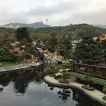 The Lotus Pond.