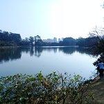 Parque do Ibirapuera Foto