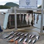 Zdjęcie Oasis Alaska Charters