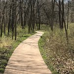 One of the pathways that leads to the mulched/dirt trails.