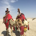 riding camels in the desert