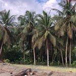 Hotel Playa Westfalia صورة فوتوغرافية
