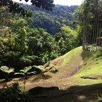 Jardin de Balata resmi