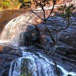 Photo of Horton Plains National Park