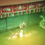 Photo of Thang Long Water Puppet Theater