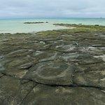 Photo of Ojima Island