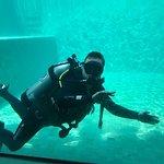 Photo of OK Divers