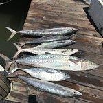 Foto de Fishing Headquarters