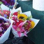 les fleurs magnifiques