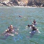 Фотография Zihuatanejo Dive Center