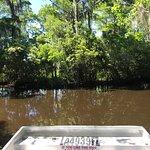 Ảnh về Swamp Adventures LLC