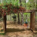Foto de Hemlock Bluffs Nature Preserve