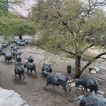 TEXAS CATTLE DRIVE IN PIONEER PARK