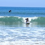 Our daughter surfing a green wave!